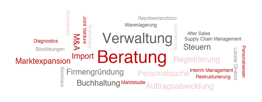 Maier Vidorno - Word Cloud - Leistungen
